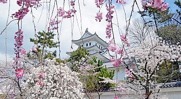 castello-ogaki