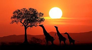 cosa-vedere-sudafrica