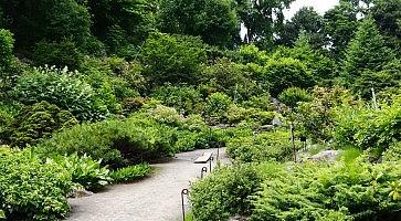 giardino-botanico-sapporo