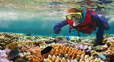 immersioni-australia