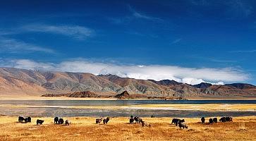 quando-andare-mongolia