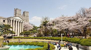 studiare-corea