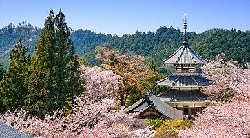tempio-kinpunsenji