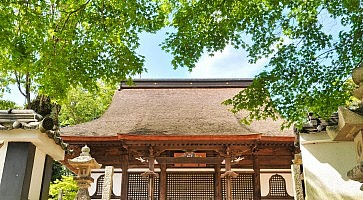 tempio-myohonji
