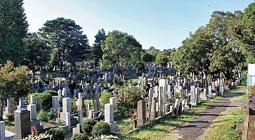 cimitero-aoyama