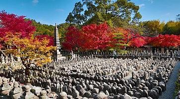 Autumn Leaves Of Adashino Nenbutsu-ji of Buddha statue