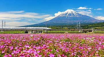 Shinkanzen or Bullet train with Mt. Fuji