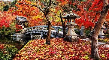 Eikando at autumn