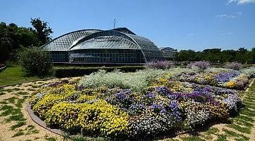 giardino-botanico-kyoto