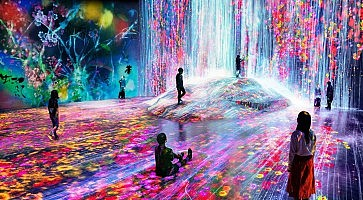 teamlab-borderless