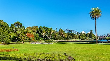 The Royal Botanical Garden of Sydney - Australia, New South Wales