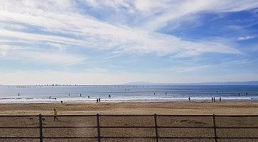 Yuigahama Beach in the sunny day