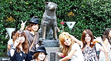 statua-hachiko-f